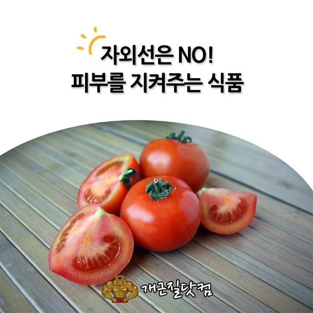 자외선차단식품개근질0.jpg