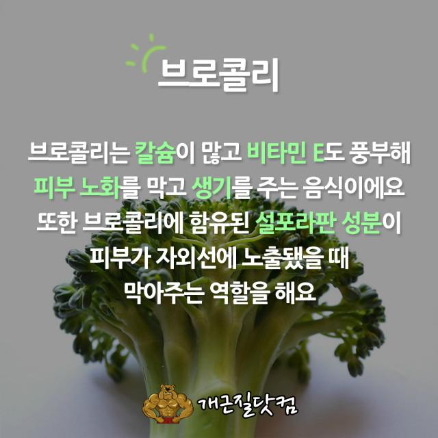 자외선차단식품개근질3.jpg