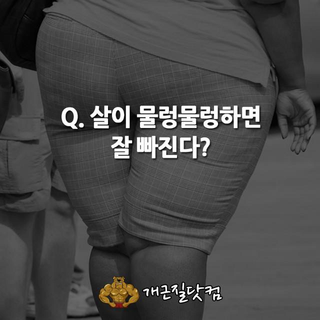 다이어트속설개근질5.jpg