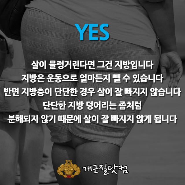 다이어트속설개근질5-2.jpg