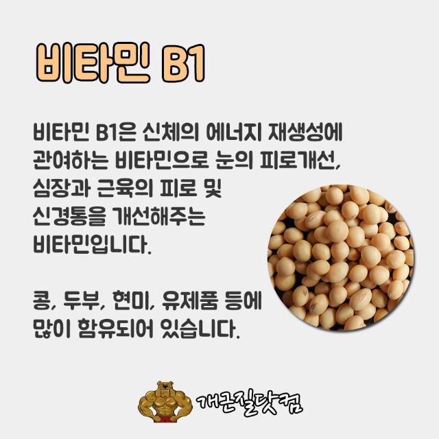 비타민B개근질1.jpg