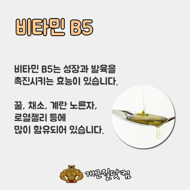 비타민B개근질4.jpg