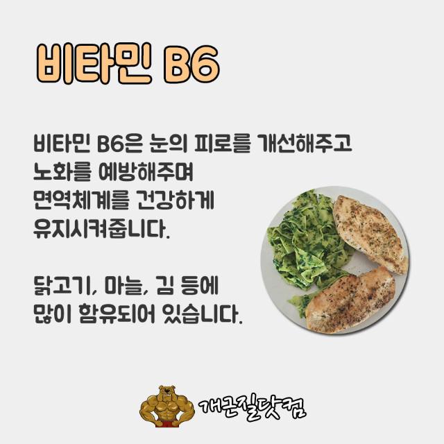 비타민B개근질5.jpg