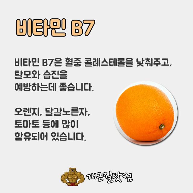 비타민B개근질6.jpg