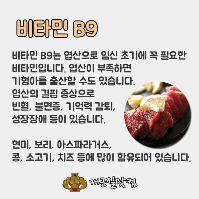 비타민B개근질7.jpg