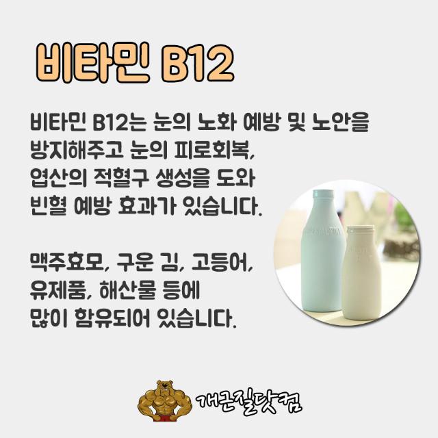 비타민B개근질8.jpg
